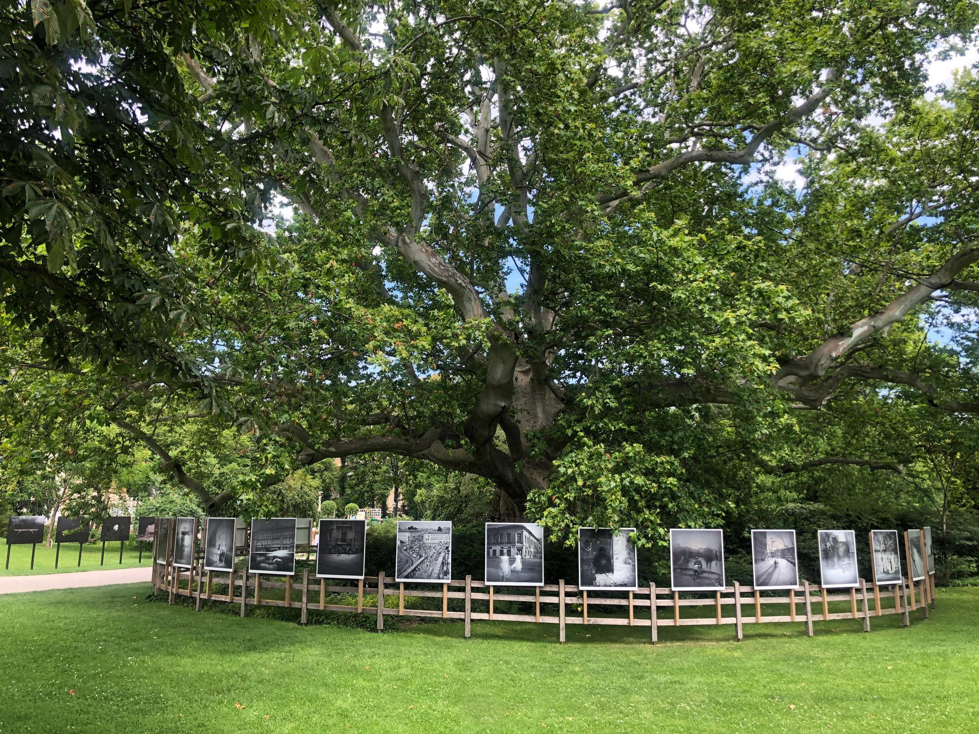 Festival La Gacilly-Baden Photo 2020: Ausstellung von Alexej Titarenko im Doblhoffpark in Baden. (c) Lois Lammerhuber / Festival La Gacilly-Baden Photo